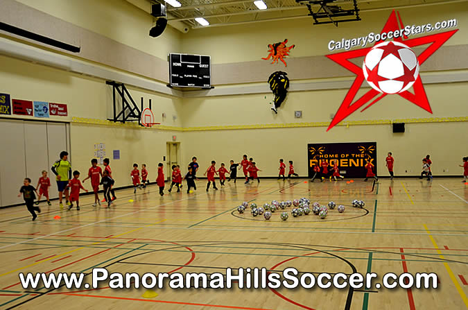 panorama-hills-soccer-stars-timbits-camp-2014-05