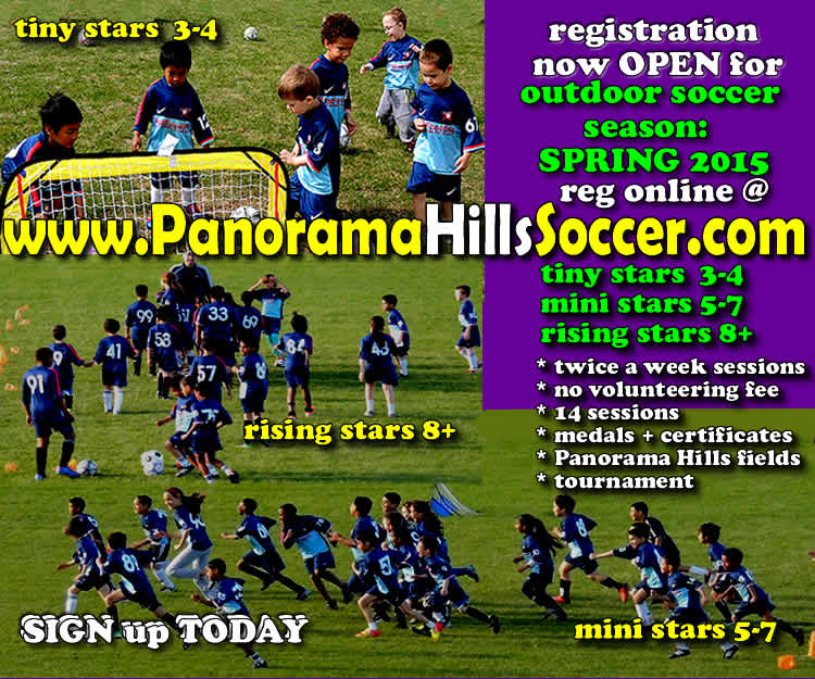 panorama-hills-springsoccer-for-kids-2015-timbits-mini-stars