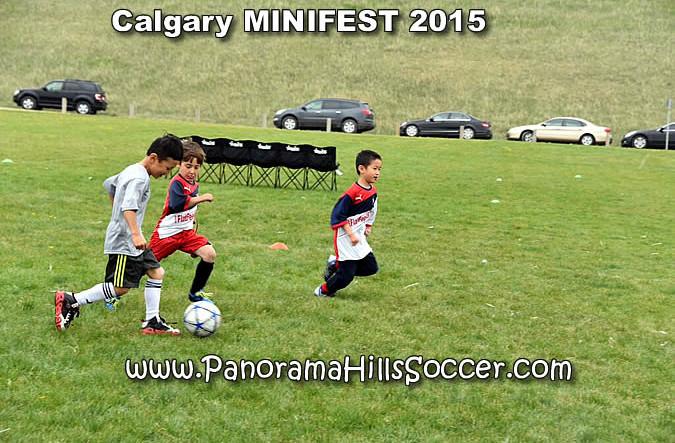 calgary soccer stars minifest