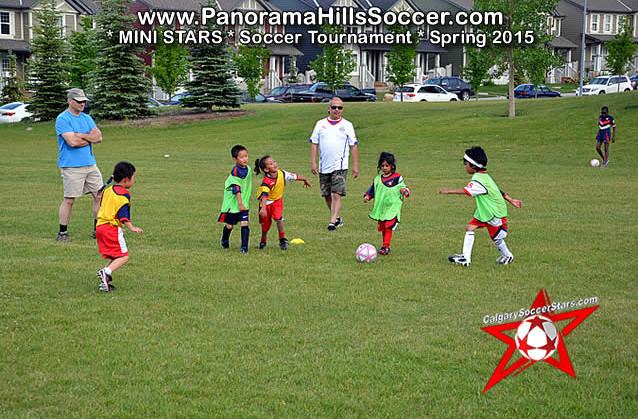 mini stars panorama hills soccer tournament for kids