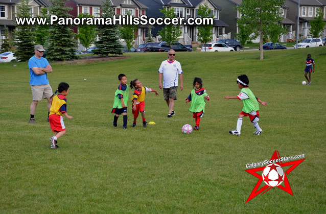 panorama-hills-soccer-tournament-timbits-tiny-stars