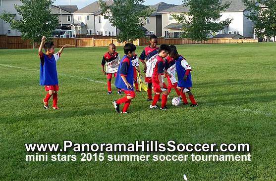 panorama-hills-calgary-mini-soccer-stars-timbits