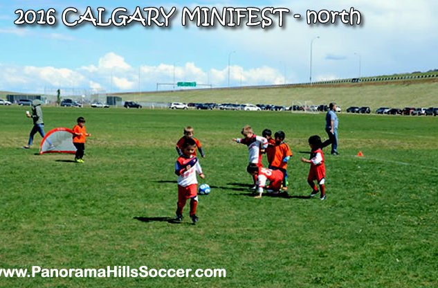 minifest-north-panorama hills soccer strars