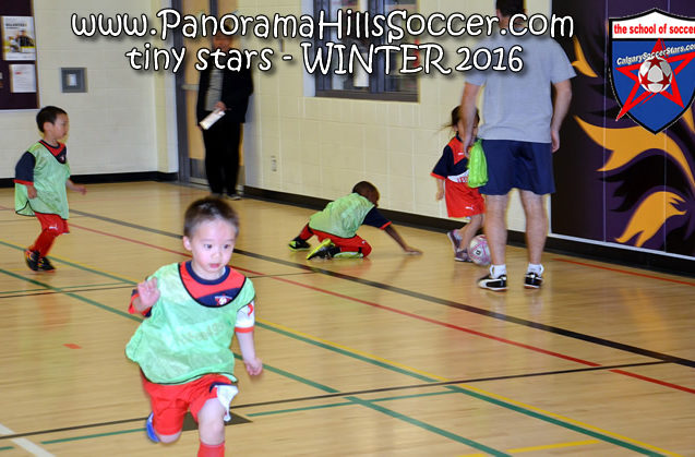 panorama hills soccer-tiny-stars