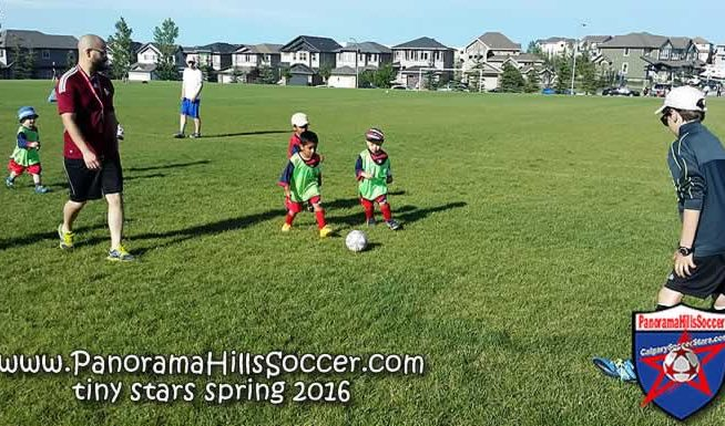 panorama-hills-soccer-tiny-stars