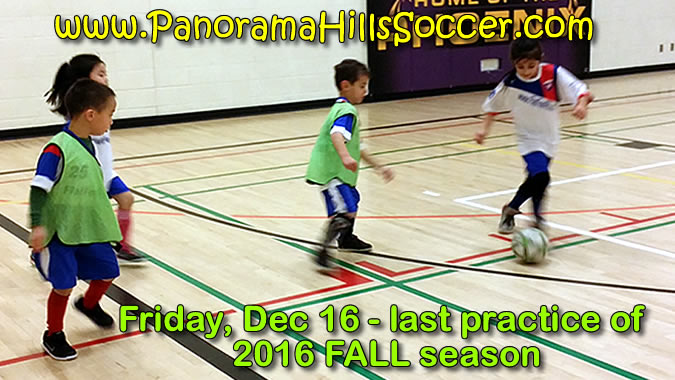 panorama-hills-soccer-stars-timbits-nw