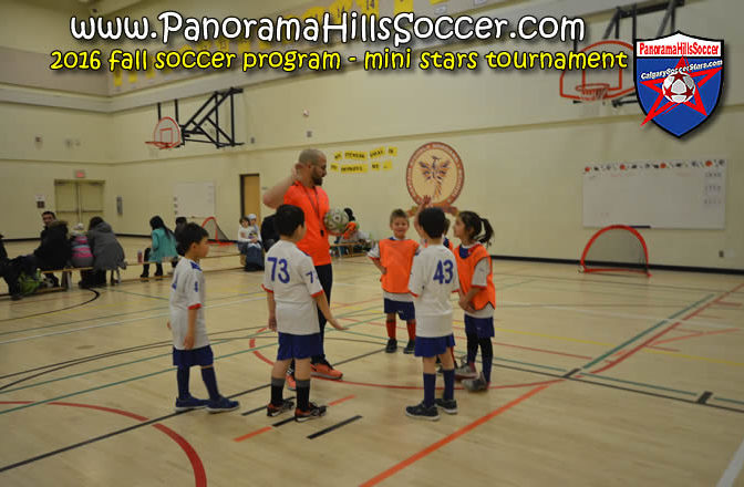2016 fall panorama soccer tournament - mini stars