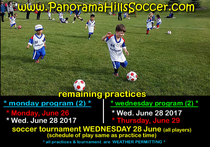 panorama-hills-soccer-for-kids--spring-tournament
