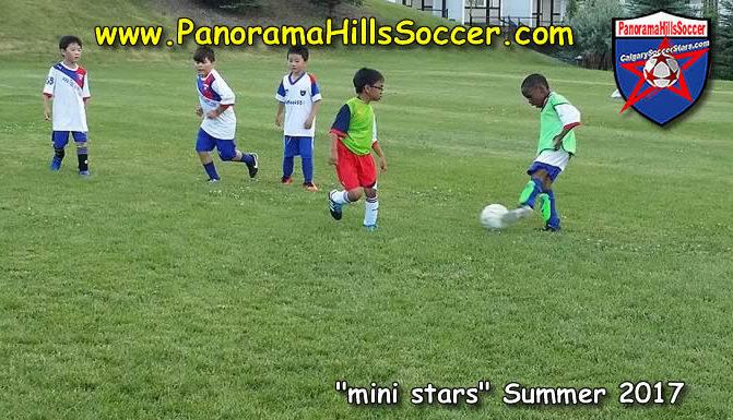 calgary nw soccer for kids, soccer stars