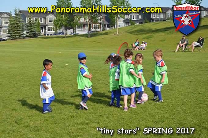 calgary soccer tots, tiny stars