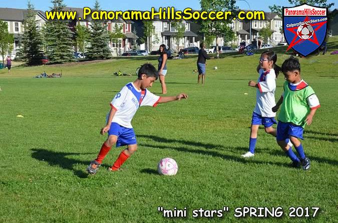 calgary soccer stars, panorama hills soccer